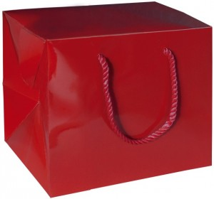 Model Bag Box Square